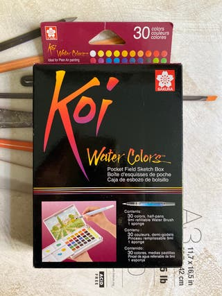 Temperas / whater colors koi