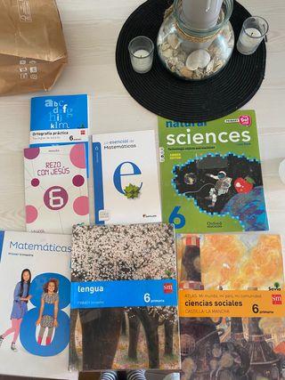 Lote de Libros de texto sexto de primaria