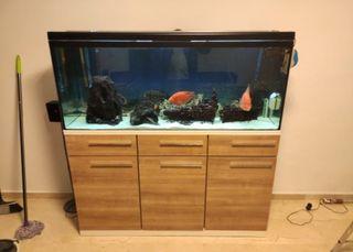 vendo o cambio acuario de 450 litros