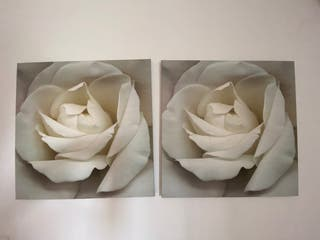 2 CUADROS / ROSA BLANCA