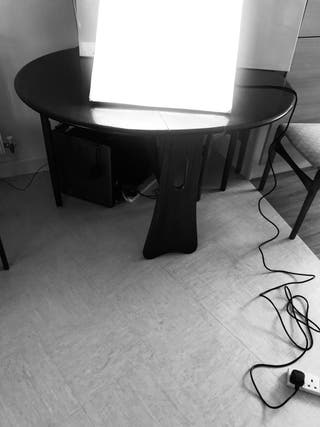 Photography Equipment Studio Plant
