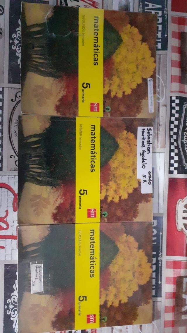 Libros de 5 de primaria de matemáticas