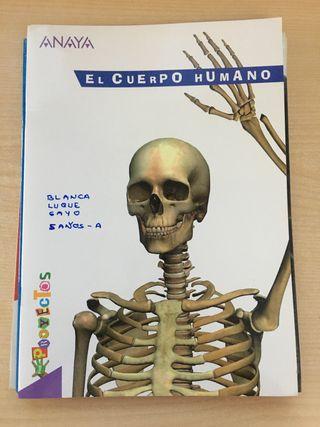 Libro el cuerpo humano Anaya