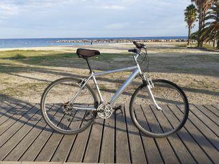 VERLA ES COMPRARLA bicicleta híbrida/custom