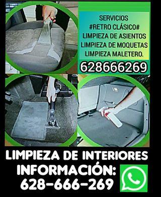 LIMPIEZA DE INTERIORES (COCHES)