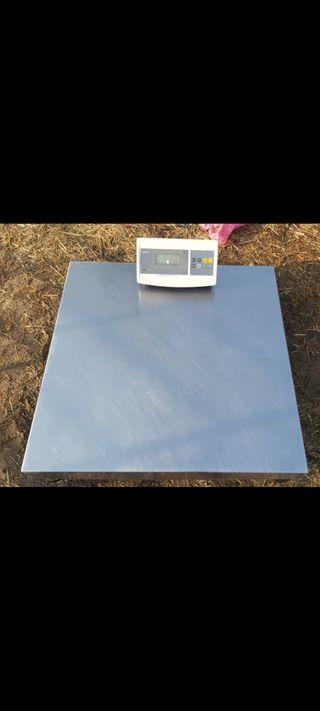 Bascula industrial 150kg