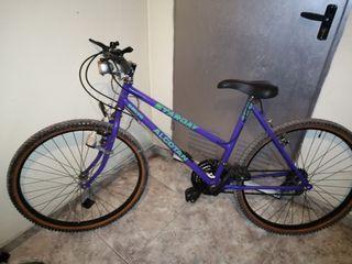 Bicicleta de montaña antigua
