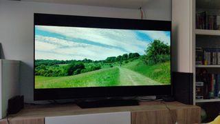 "vendo Tv LG OLED 55"""