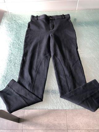 Pantalon de Hipica