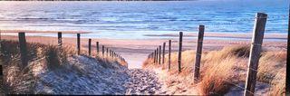 Cuadro paisaje playa