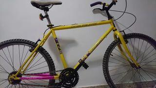 Vintage Bici Adulto McKinley 26