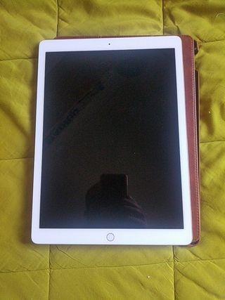iPad pro 12,9 pulgadas