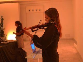 Clases de violín online. Niños y adultos.