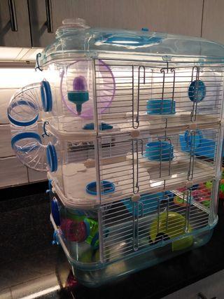 gavia per a hamster