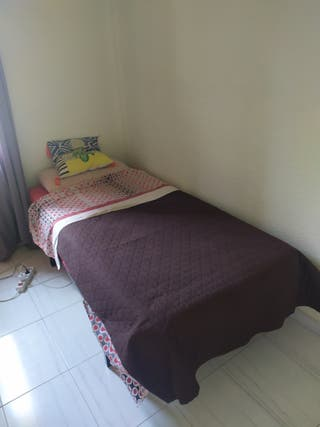 regalo cama 1 plaza