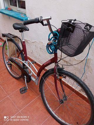 bicicleta paseo grande