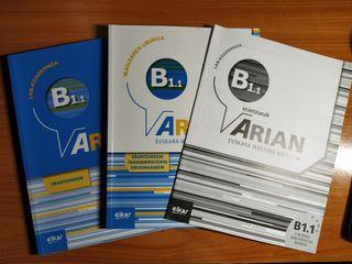 Arian Euskara B1.1