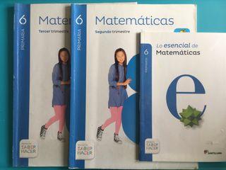 Libro de matemáticas 6º primaria