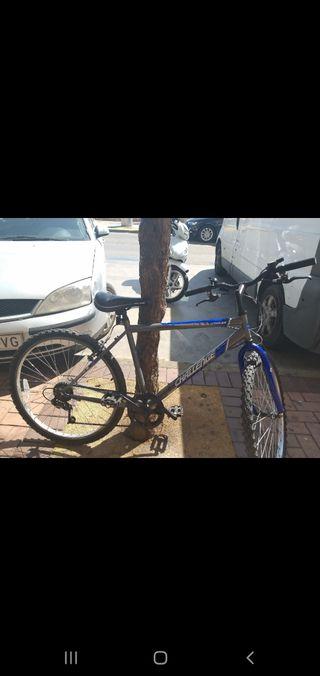bicicleta challenge
