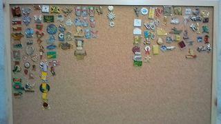 pins de colección
