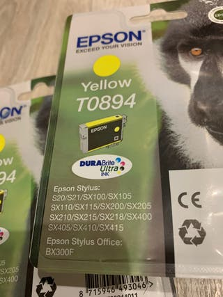 Cartucho EPSON T0894 Yellow Mono