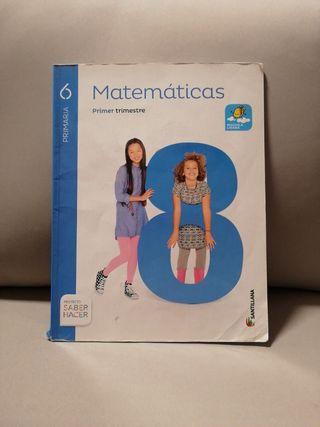 libro de matemáticas 6º de primaria primer trimes