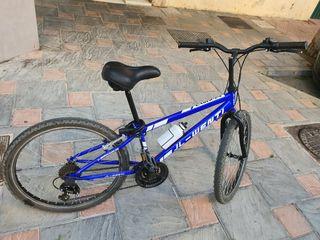 bicicleta ring 24pg
