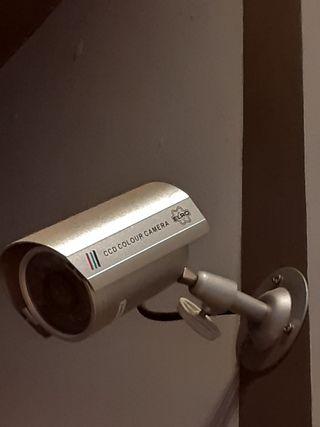 camara seguridad simulada