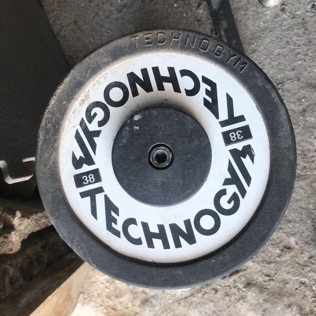 Mancuerna technogym suelto