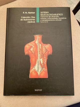 Sistema Musculosquelético. Netter. Tomo 8.2 B