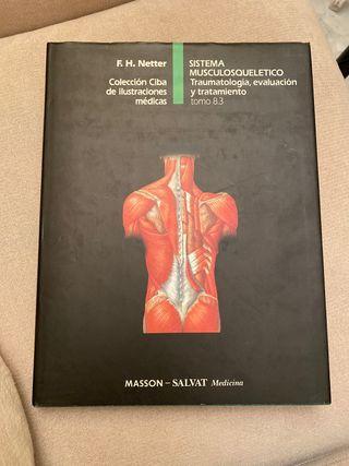 Sistema Musculosquelético. Tomo 8.3
