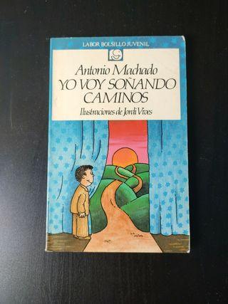 Yo voy soñando caminos, Antonio Machado