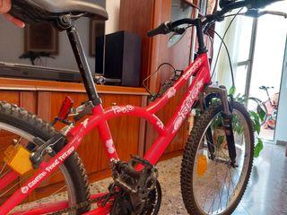 bicicleta niña orbea
