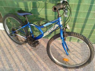 "Bicicleta Orbea 24"""
