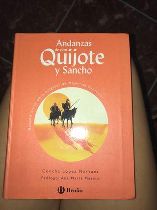 "Libro de lectura ""don quijote"""