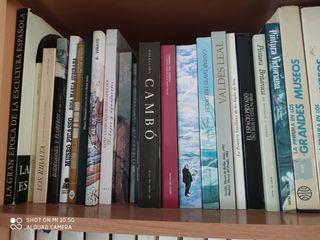 vendo libros de pintores