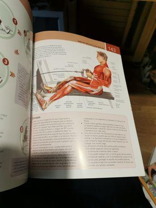 Fitness Anatomía y ejercicios