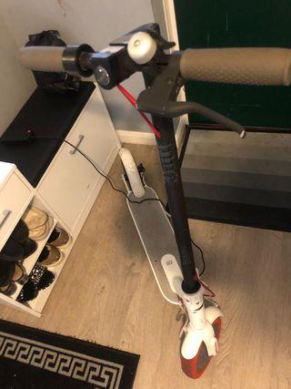 Xaomi 365 scooter