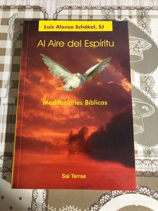 Al aire del espíritu. Meditaciones bíblicas.