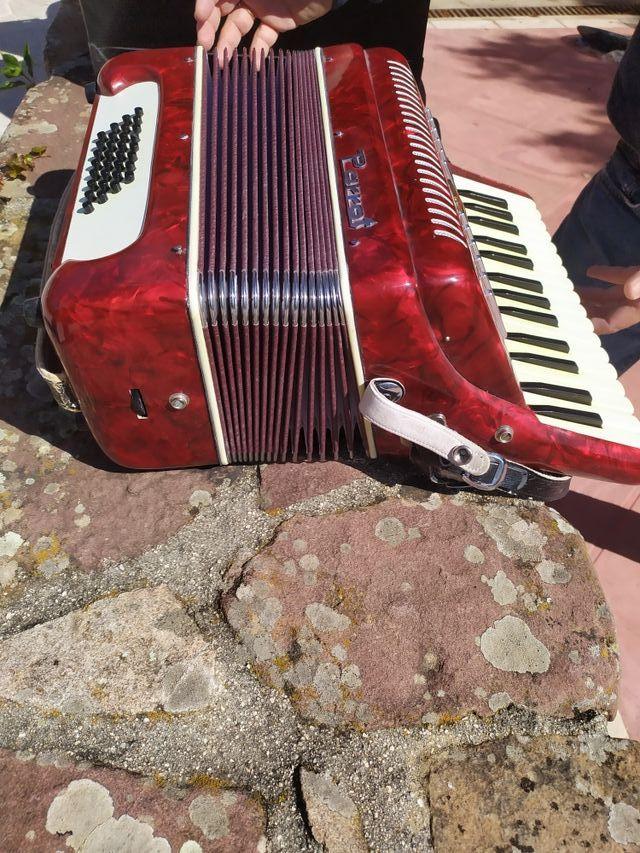 acordeon parrot practicamente sin uso