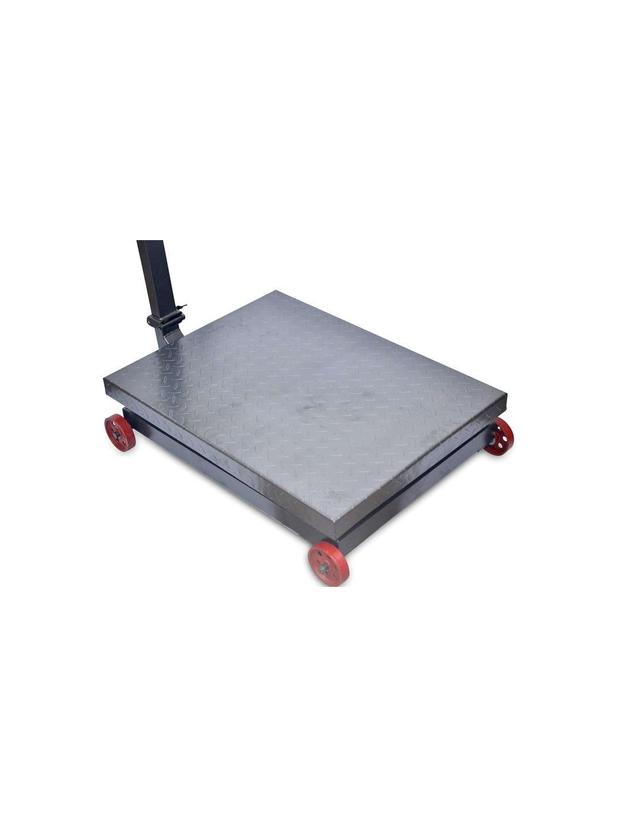 Báscula Industrial De Plataforma 1000kg/200g