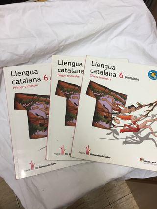 Llengua Catalana 6 primaria