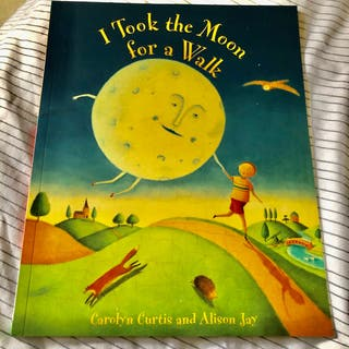 I Took The Moon For A Walk Children's Book