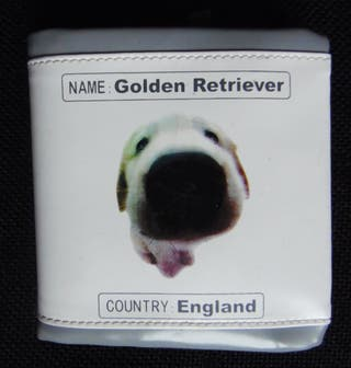 . the dog artlist collection. golden retriever