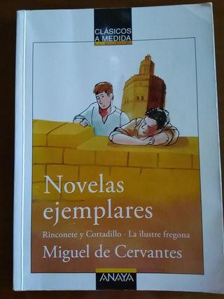 Novelas ejemplares.