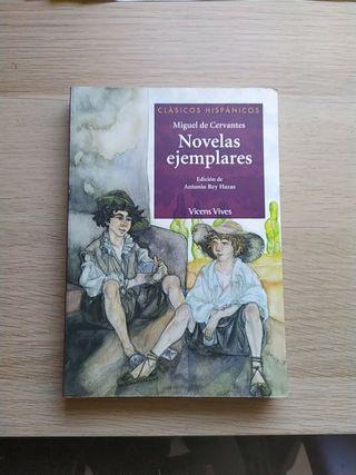 Novelas Ejemplares, Vicens Vives