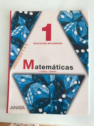 Matemáticas 1º educación secundaria