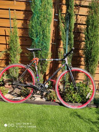 Bicicleta ciudad fixie