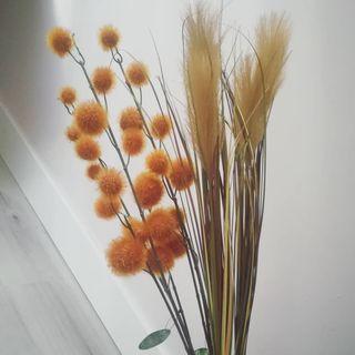 hierba de la pampa 78 cm