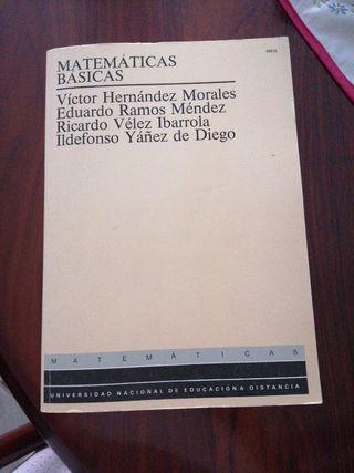 Matemáticas Básicas, Victor Hernández Morales